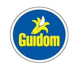 logo de Guidom